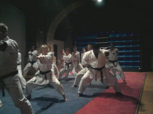 Karate_1_R