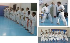 Karate_Fusion-2